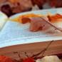 Yndlingsbøger! Bibliotekarerne anbefaler